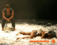 Rammstein Feathers Wallpaper