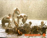 Rammstein Rain2 Wallpaper