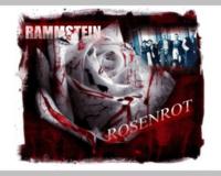 Rammstein Rosenrot2 Wallpaper